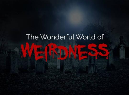 The Wonderful World of Weirdness
